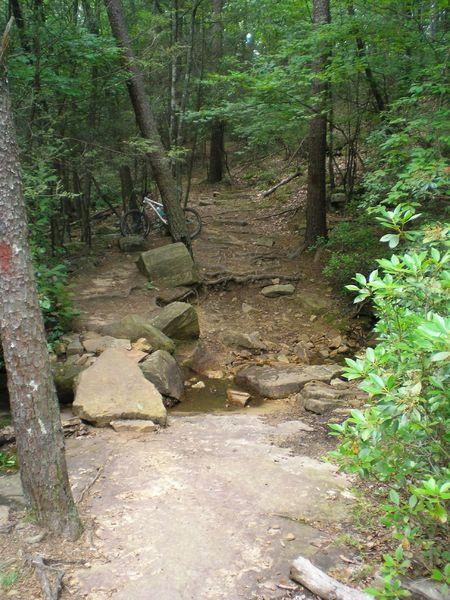 Rocky stream crossing on Arrowhead.