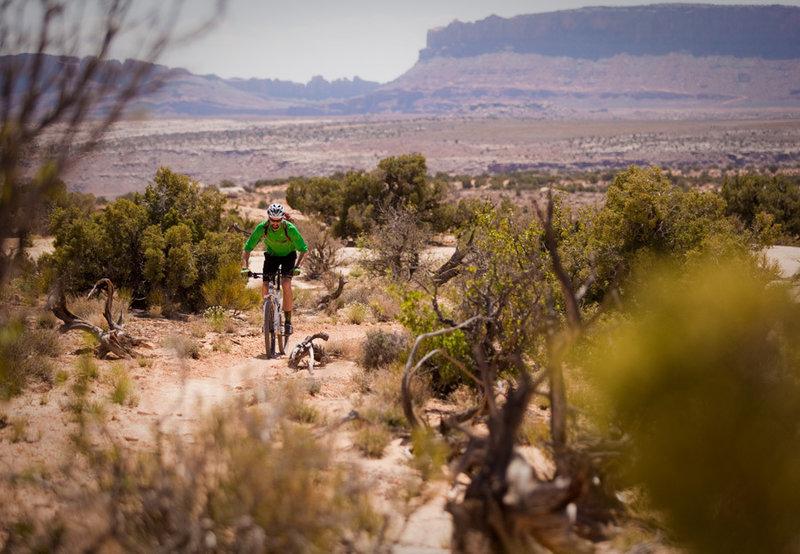 Climbing back towards an intersection with Sovereign through the sun baked desert