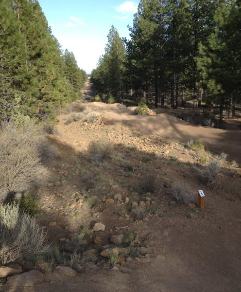 Looking back to Phil's slalom course