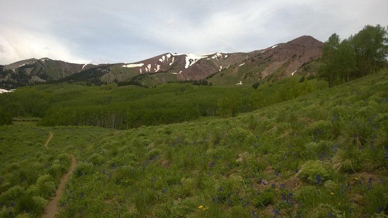 Deer Creek views