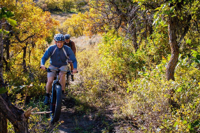 Riding the fat bike at Cerro.