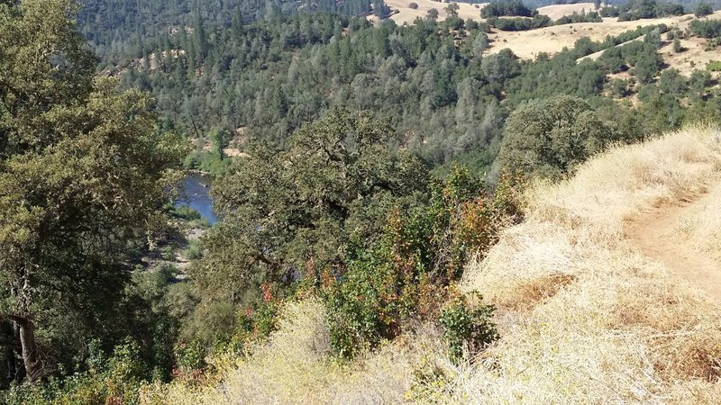 View of the American River and descent start