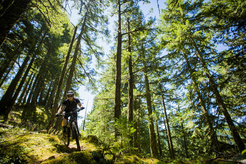 After a steep hike-a-bike, the spicy downhill beings on Deception Butte trail.