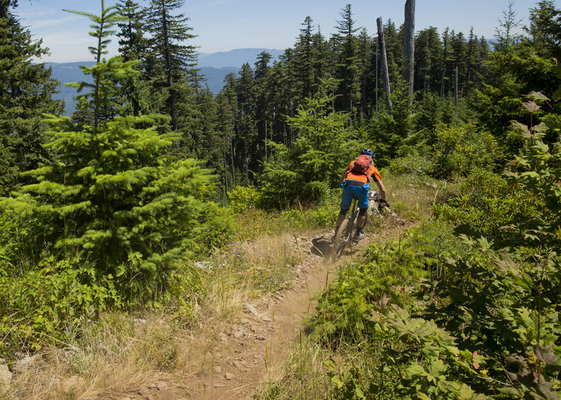 Lawler trail has plenty of fast and chunky sections.