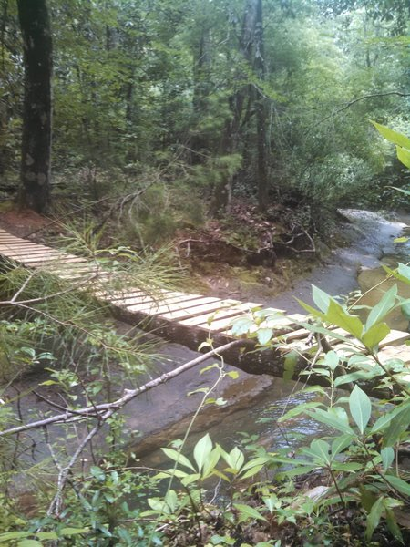 New bridge across the creek. Approximately 2 feet wide and about 8 feet above the creek. High adventure!