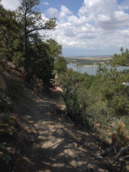 A view south along the trail corridor.