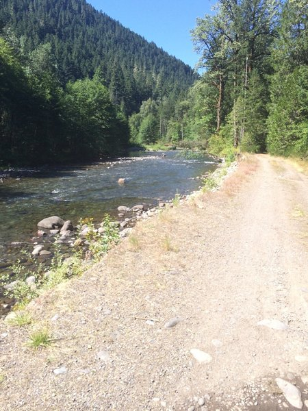 One of several views of Salmon Creek.