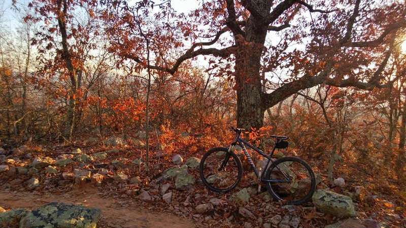Great fall day, November 2012