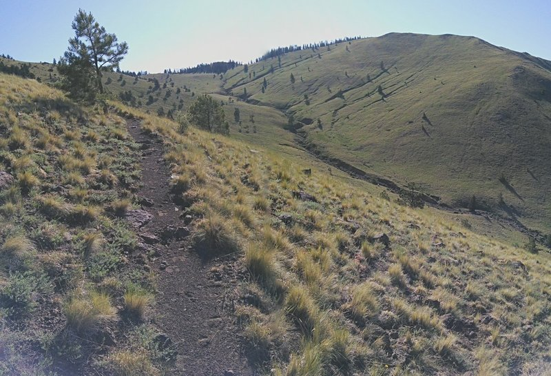 The trail climbs along this broad valley on its way to the second saddle