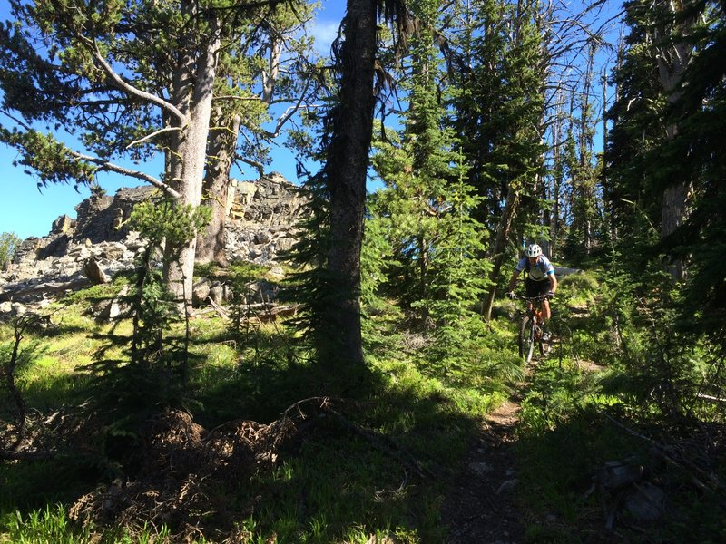 Riding along the Palisade ridge.