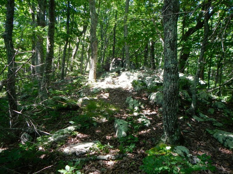 Trail winds through the old rocks