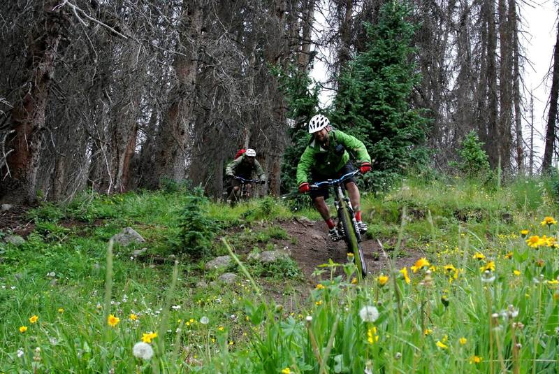 Shredding a steep, rooty section of Miner's Creek.