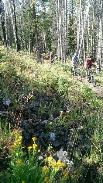 Heading up the initial climb on the Washington Lake Trail