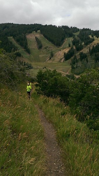 Trail runners on Gap Bypass