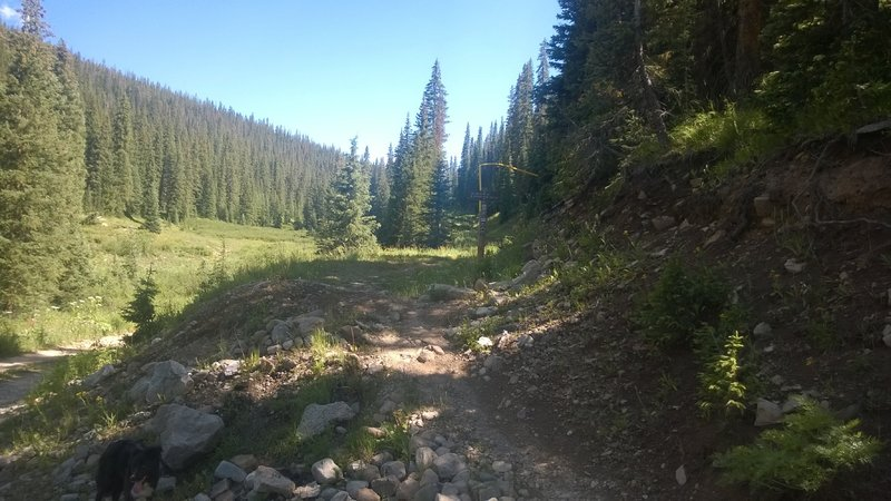 The start of Lily Lake Trail