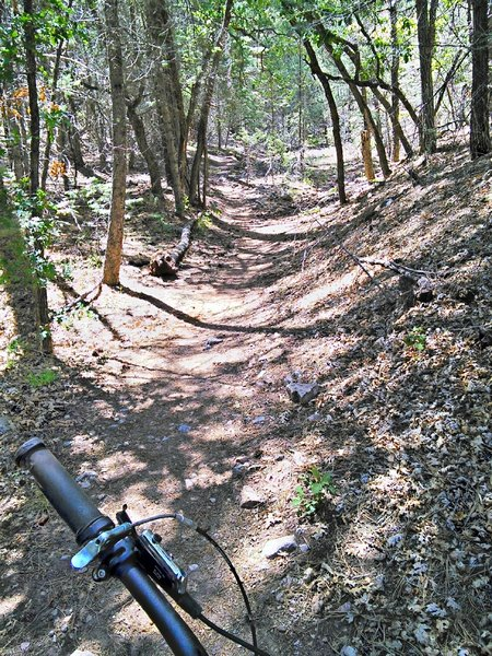 Steeper section approaching South Faulty Trail