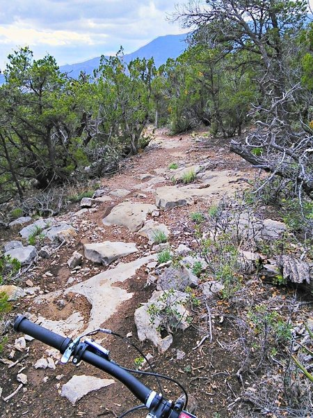 Low escarpment is fully exploited by trail designers to add some welcome chunk to the Cedro area