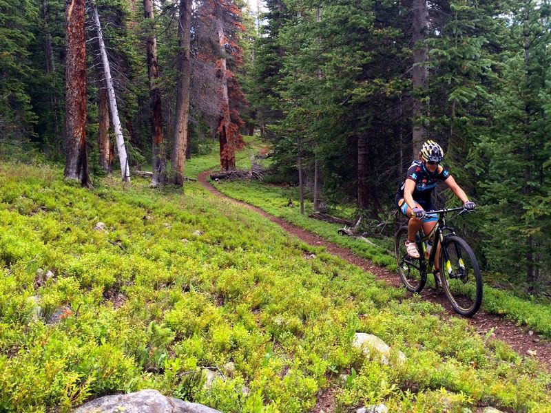 Great riding in the green carpeting!