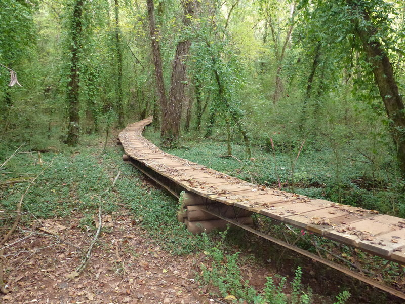 This 4' wide bridge spans about 150'.  This is the lowest point on the Victor Ashe trail.