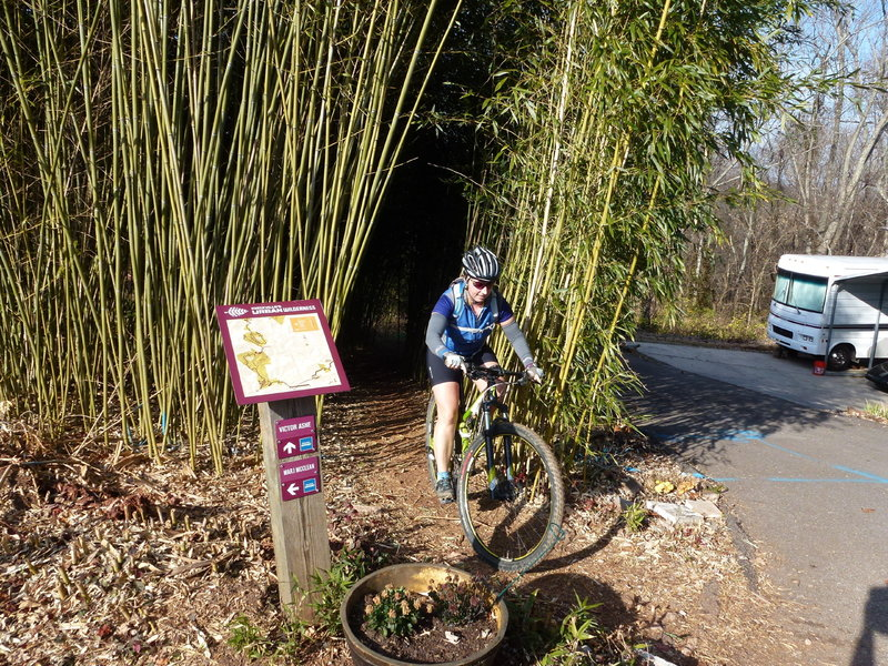 Bamboo entrance off View Park Dr.