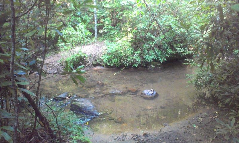 First creek crossing.