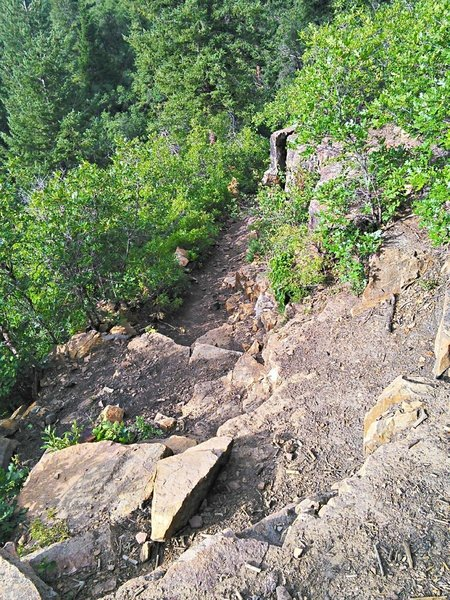 The initial plunge into the gorge is quite steep and rocky, with bedrock steps and water bars