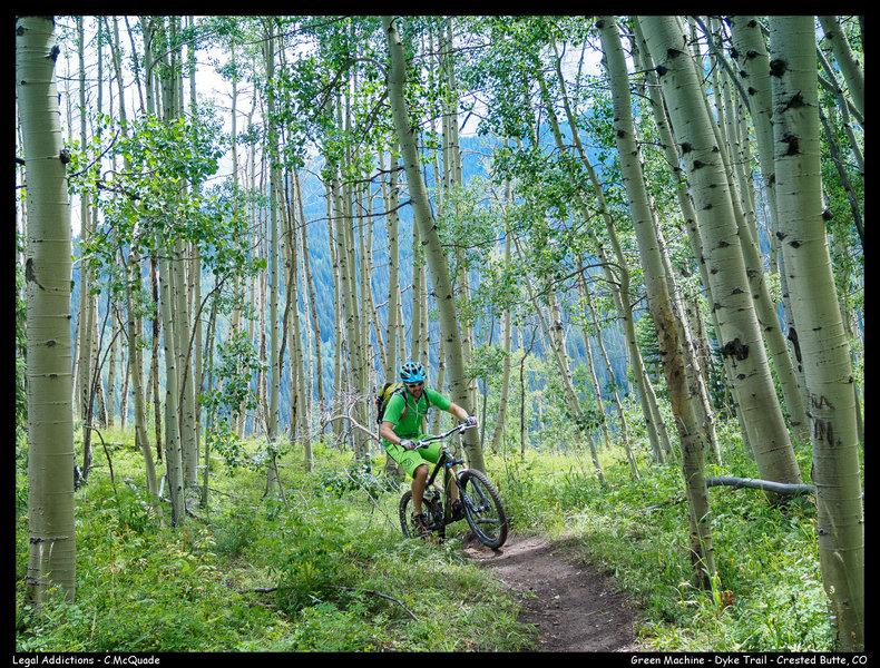 Aspen riding at its best