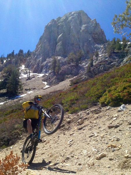 Popping Wheelies on Mammoth Rock(s)