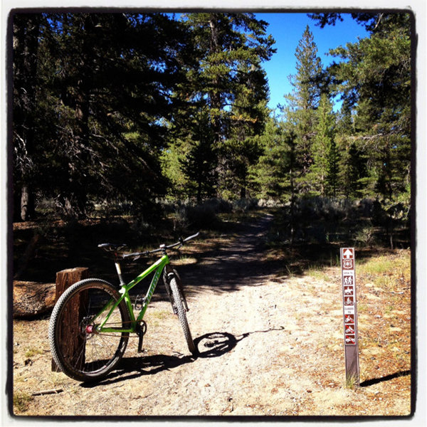 The Inyo Craters trailhead