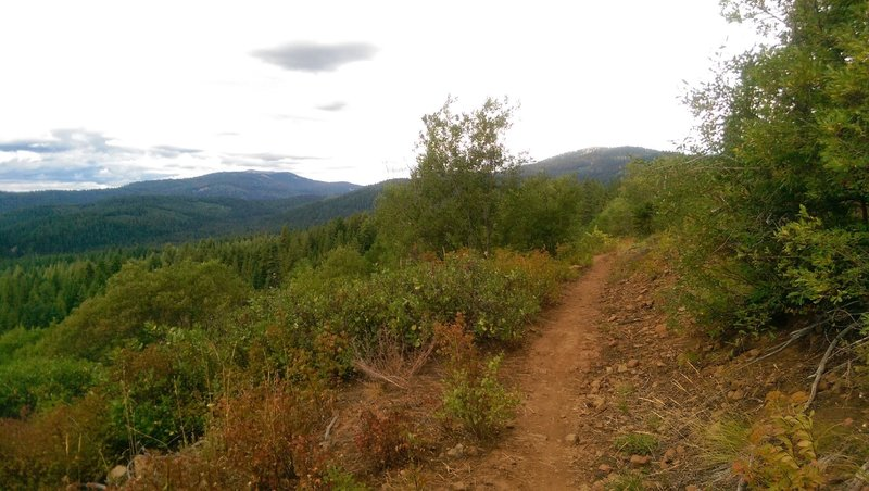 The view from the Grand Traverse Looking towards Brundage.