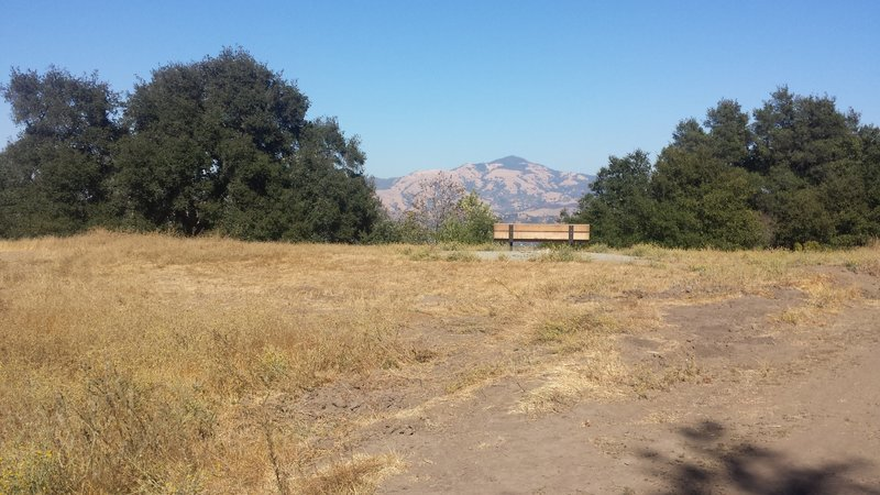 View of Mt Diablo from near the intersection of Las Trampas and the Madrone trail