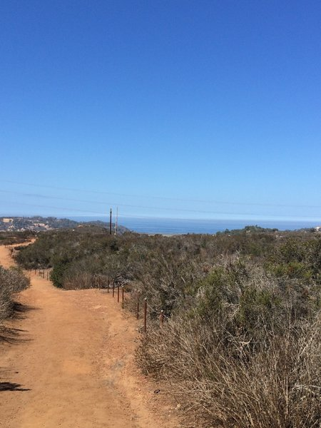Trail along habitat restoration.
