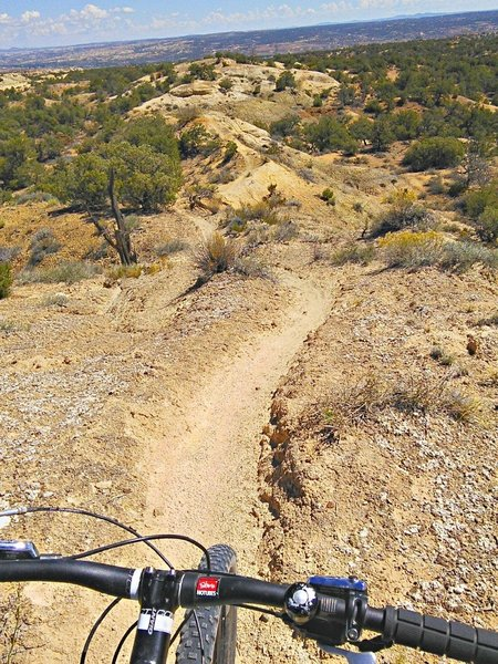 Sections of narrow sand ridge discourage motorized use, preserving the singletrack