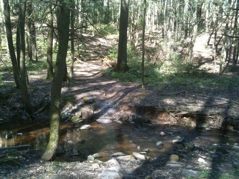 Solid armored creek crossing, one of the many nice features that SAMBA placed in the trail.