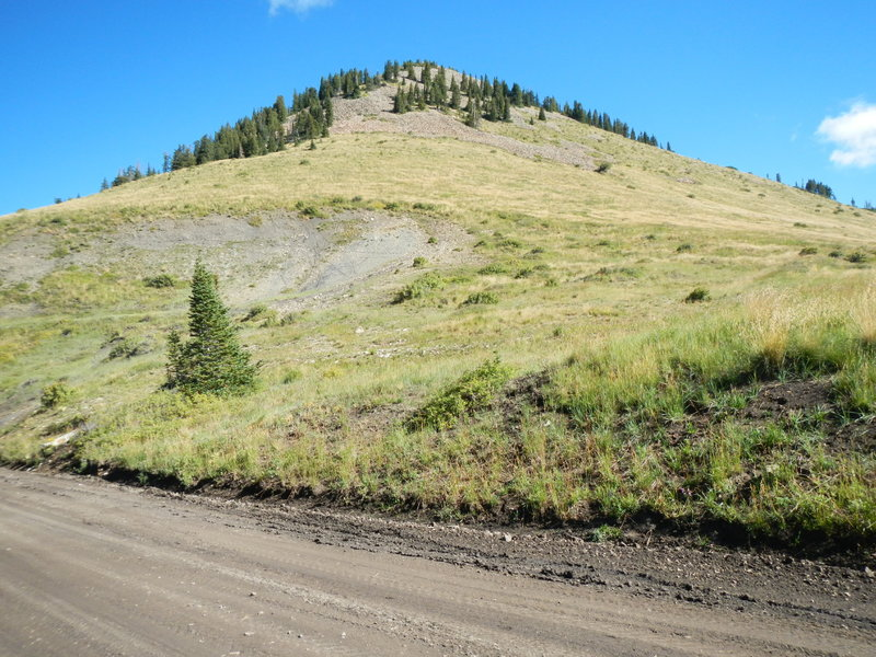 On and near North Creek Pass, you have fine views of Horsehead Peak, to the north.