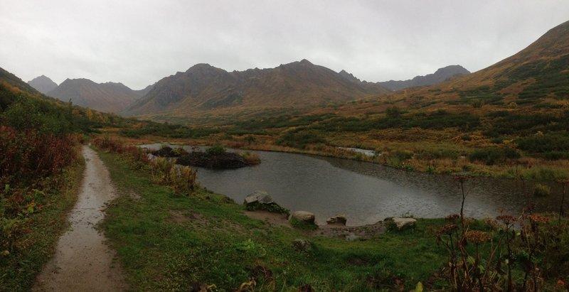 A few beaver dams on this trail.