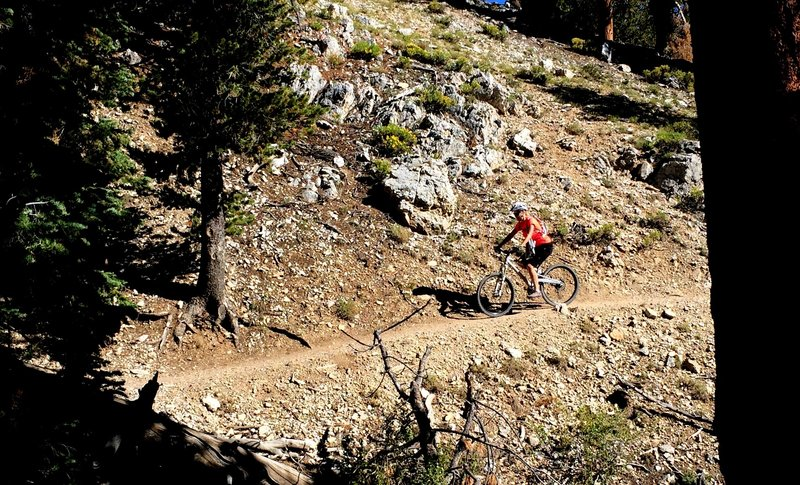 A smooth section of the Upper Bristlecone Trail