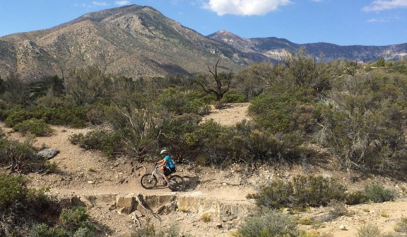 Great scenery riding up the ShowGirl Trail