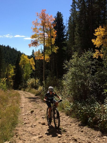 Buffalo Trail is just a climb up a dirt road... though pretty in spots