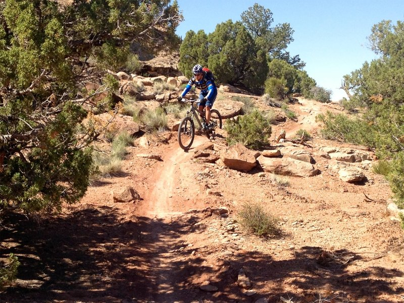Nice mix of dirt singletrack and slickrock on this section