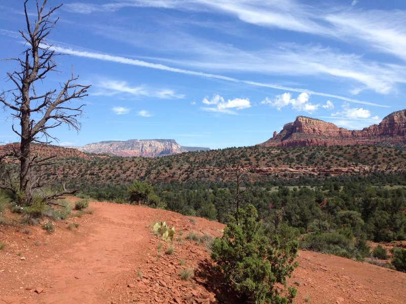 At the base of Cathedral Rock