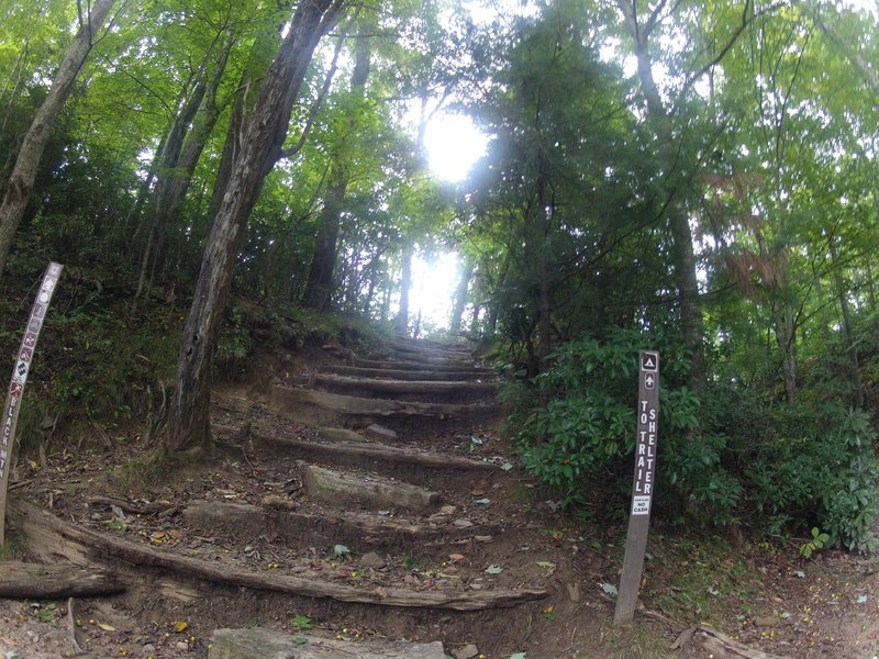 Gnarly steps on Black Mountain descent.