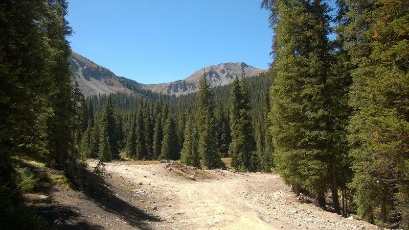 Near the switchback on FS839 Alpine Tunnel