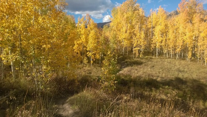 A perfect fall day on Meander