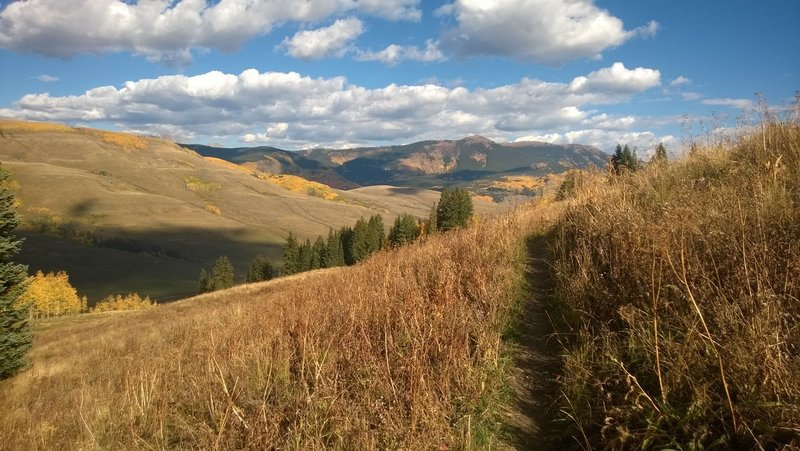 Traversing the upper meadows of Meander Trail
