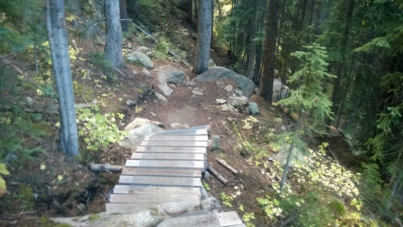 Ramps dropping down into more rock garden