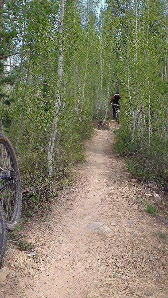 Lower Flume Trail, Breckenridge