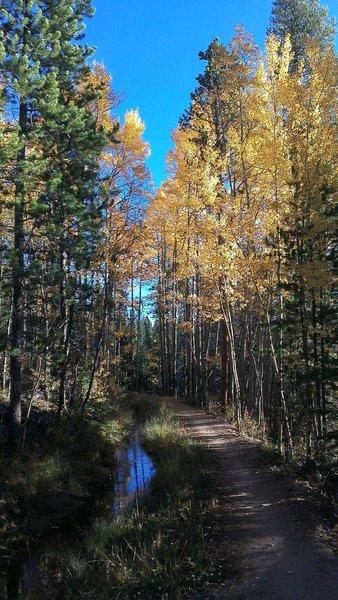 Diversion ditch along Peaks Trail
