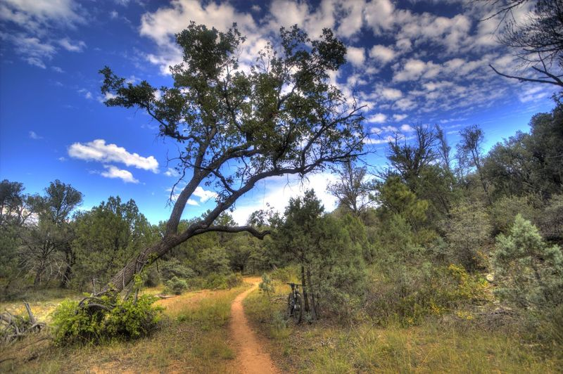 Heading clockwise on Salida Gulch Trail