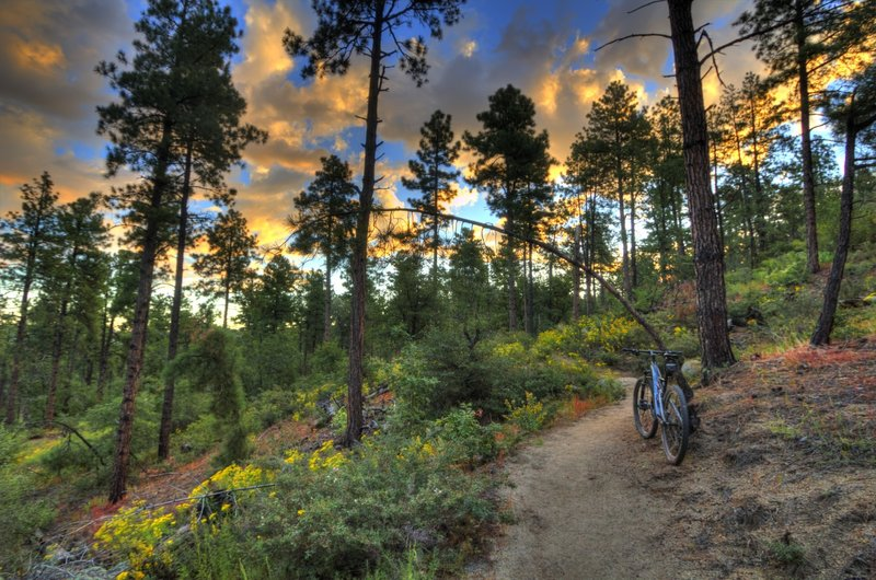 Sun rising on Groom Creek Trail